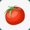 西红柿小说 v1.1